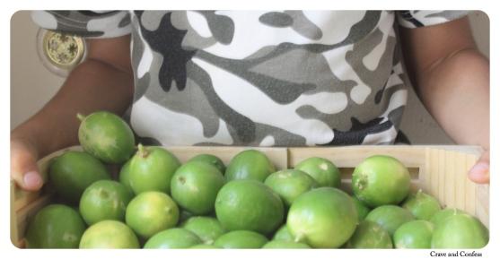 limes homegrown doha qatar limeade summer